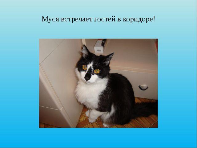 Муся встречает гостей в коридоре!