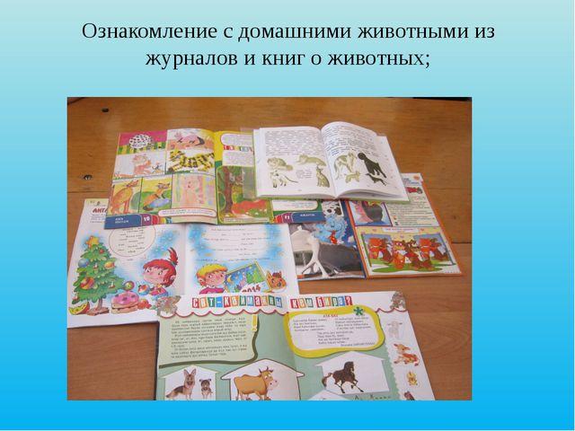 Ознакомление с домашними животными из журналов и книг о животных;