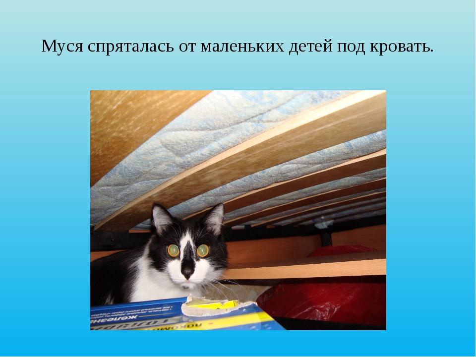 Муся спряталась от маленьких детей под кровать.
