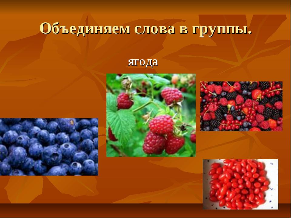 Объединяем слова в группы. ягода