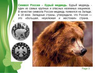 Символ России – бурый медведь. Бурый медведь - один из самых крупных и опасны