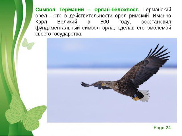 Символ Германии – орлан-белохвост. Германский орел - это в действительности о...