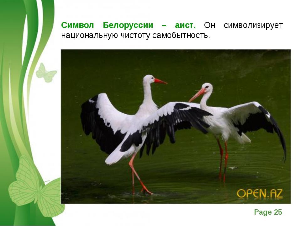 Символ Белоруссии – аист. Он символизирует национальную чистоту самобытность....