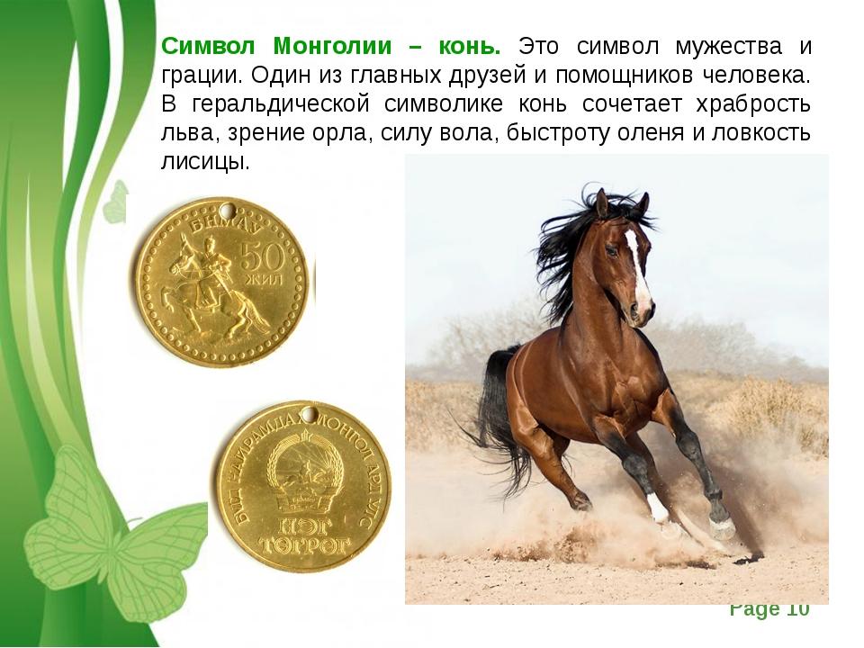 Символ Монголии – конь. Это символ мужества и грации. Один из главных друзей...