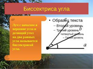 Биссектриса угла Луч с началом в вершине угла и делящий угол на два равных уг