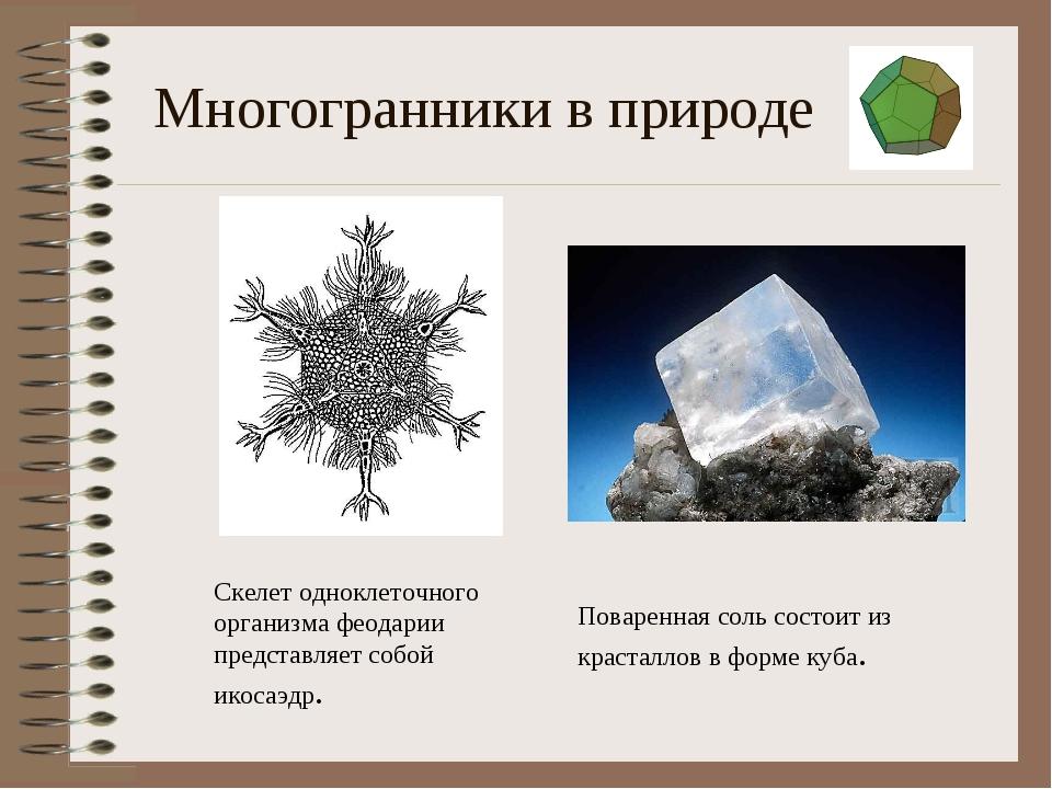 Многогранники в природе Поваренная соль состоит из красталлов в форме куба. С...