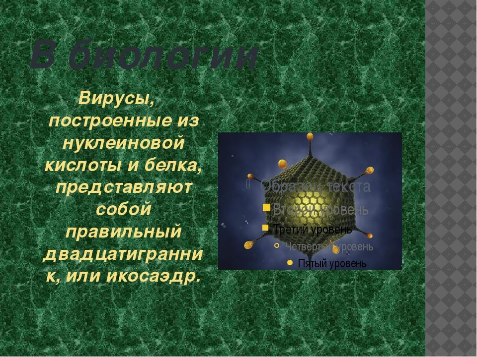 В биологии Вирусы, построенные из нуклеиновой кислоты и белка, представляют с...