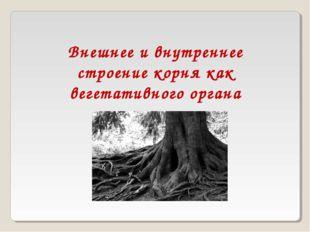 Внешнее и внутреннее строение корня как вегетативного органа растения.