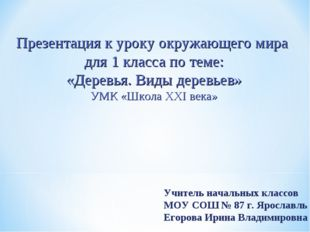 Учитель начальных классов МОУ СОШ № 87 г. Ярославль Егорова Ирина Владимировн