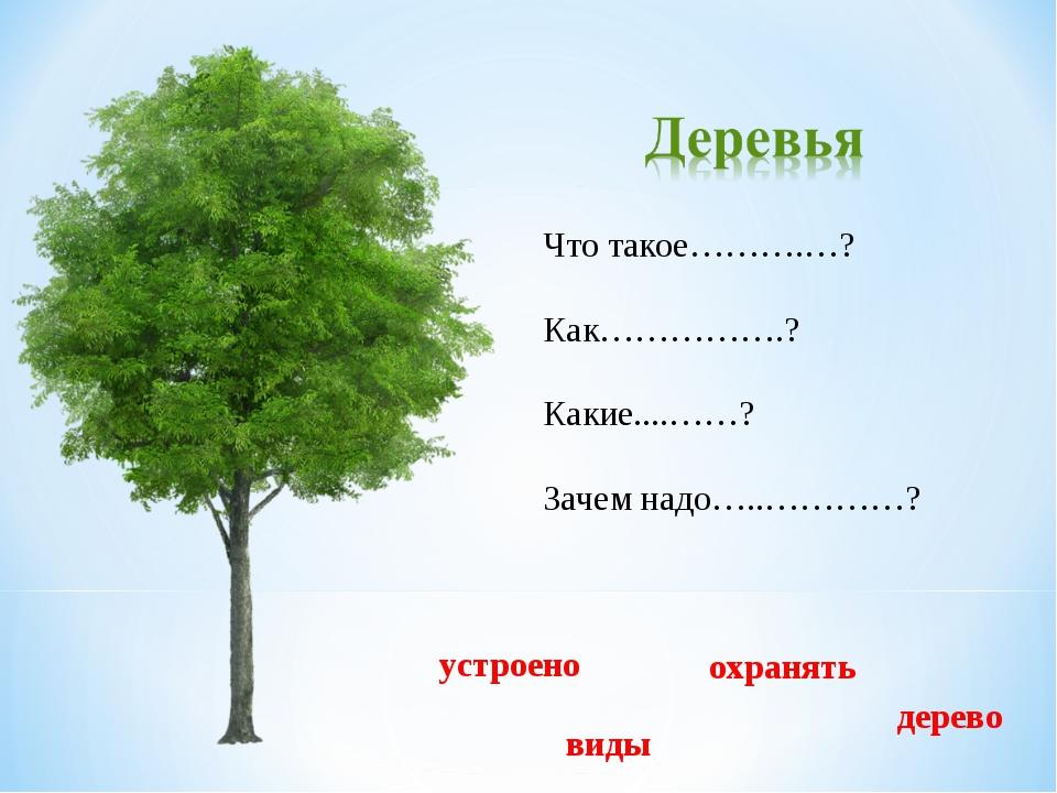 Что такое……….…? Как…………….? Какие....……? Зачем надо…..…………? дерево виды устрое...