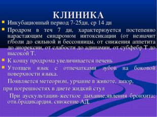 КЛИНИКА Инкубационный период 7-25дн, ср 14 дн Продром в теч 7 дн, характеризу