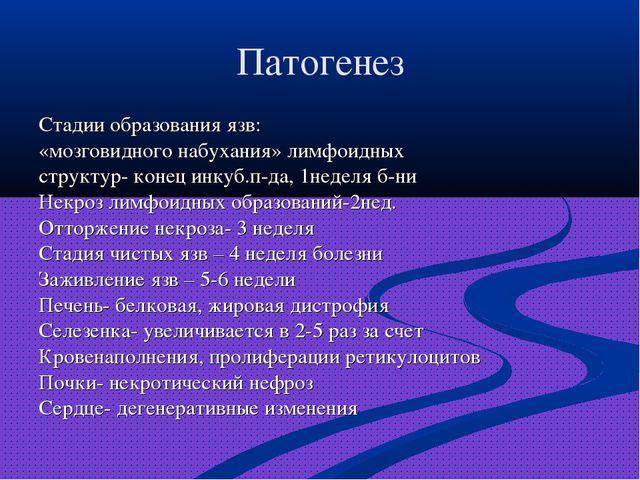Патогенез Стадии образования язв: «мозговидного набухания» лимфоидных структу...