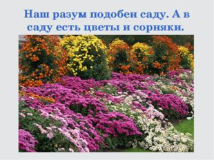 Наш разум подобен саду. А в саду есть цветы и сорняки.