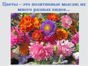 Цветы – это позитивные мысли; их много разных видов…