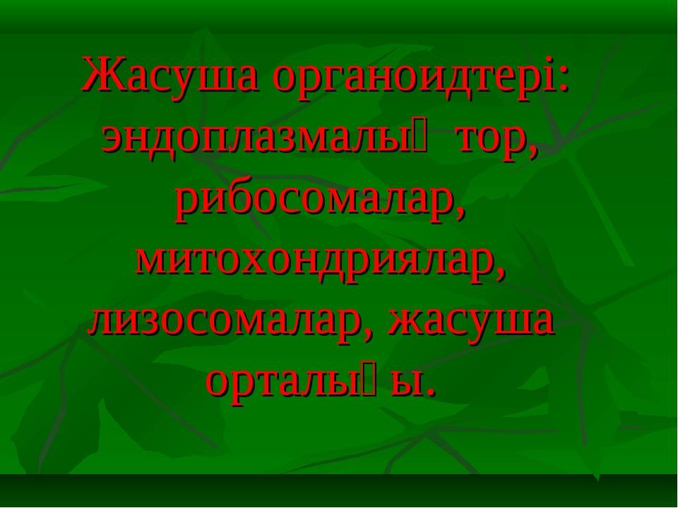 Жасуша органоидтері: эндоплазмалық тор, рибосомалар, митохондриялар, лизосом...
