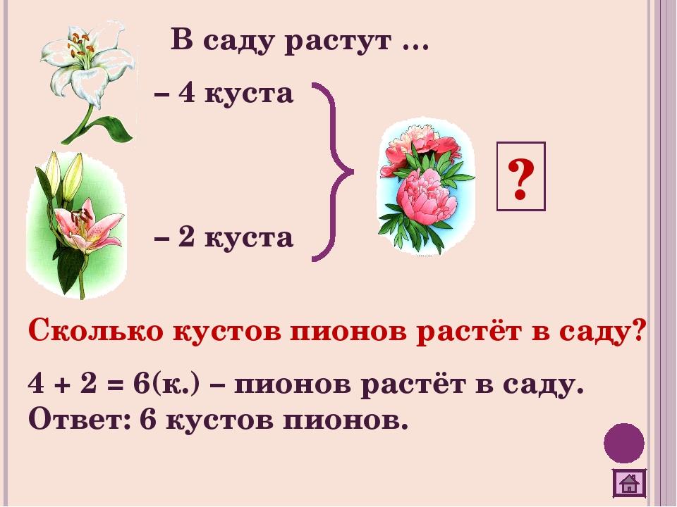 В саду растут … ? – 4 куста – 2 куста Сколько кустов пионов растёт в саду? 4...