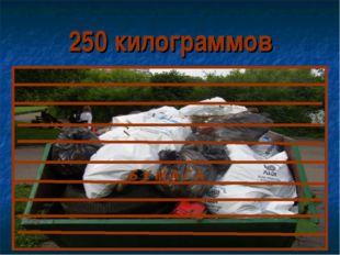250 килограммов Б У М А Г А