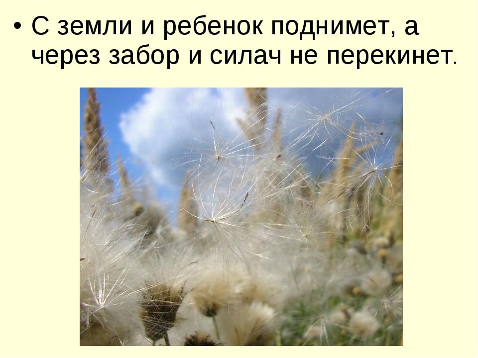 С земли и ребенок поднимет, а через забор и силач не перекинет.