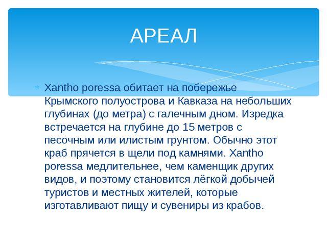 Xantho poressa обитает на побережье Крымского полуострова и Кавказа на неболь...