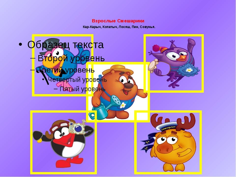 Взрослые Смешарики Кар-Карыч, Копатыч, Лосяш, Пин, Совунья.