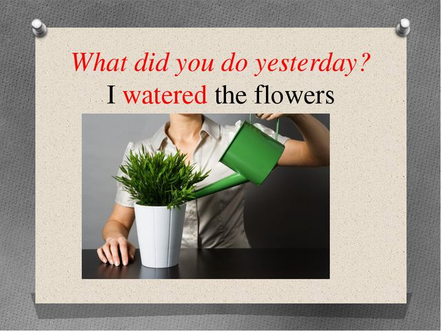 What did you do yesterday? I watered the flowers