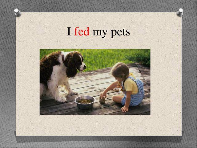 I fed my pets