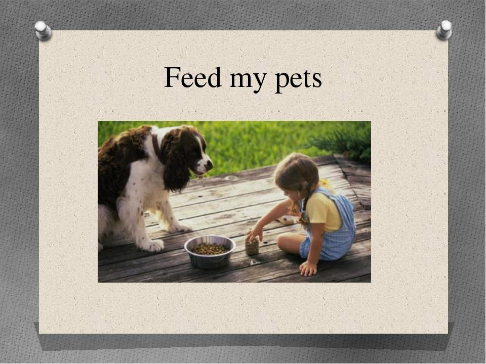 Feed my pets