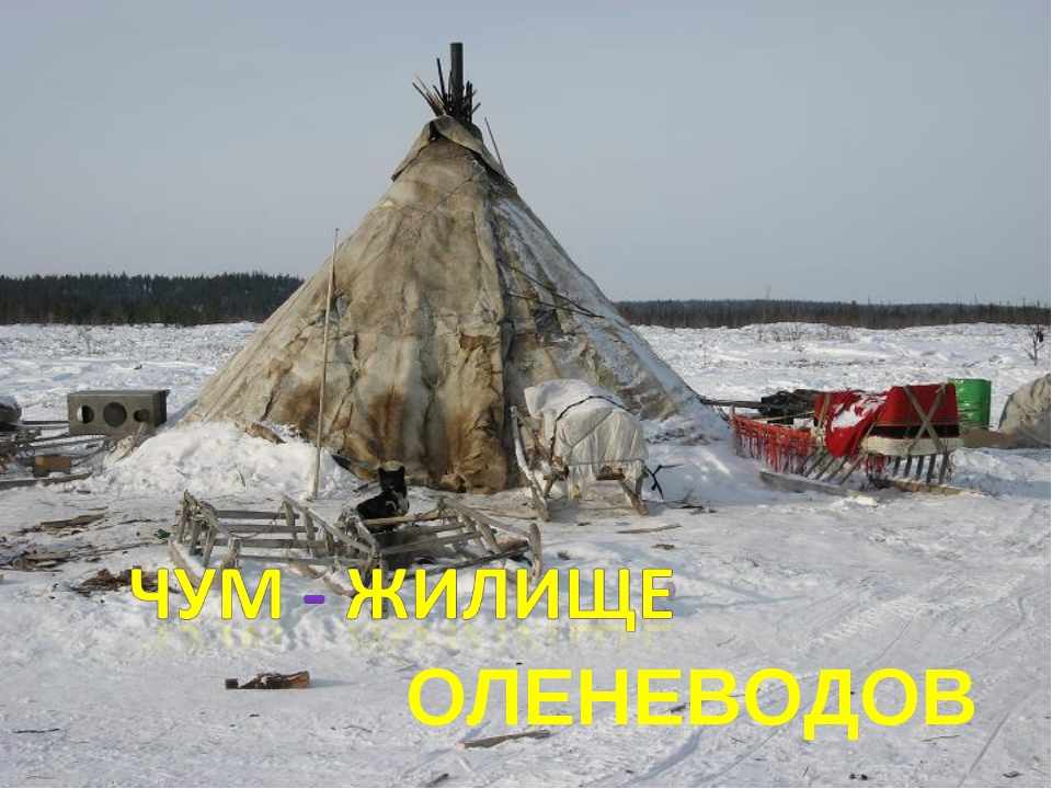 ОЛЕНЕВОДОВ