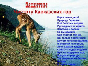 Чистоту Кавказских гор Взрослые и дети! Природу берегите. К её богатым недра