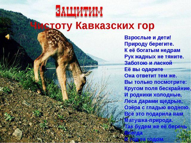 Чистоту Кавказских гор Взрослые и дети! Природу берегите. К её богатым недра...