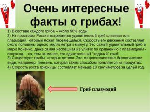 1) В составе каждого гриба – около 90% воды. 2) На просторах России встречает