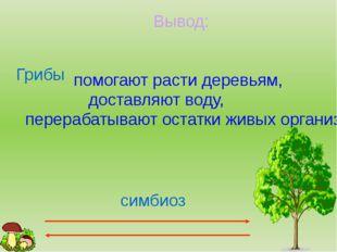Вывод: Грибы помогают расти деревьям, доставляют воду, перерабатывают остатки