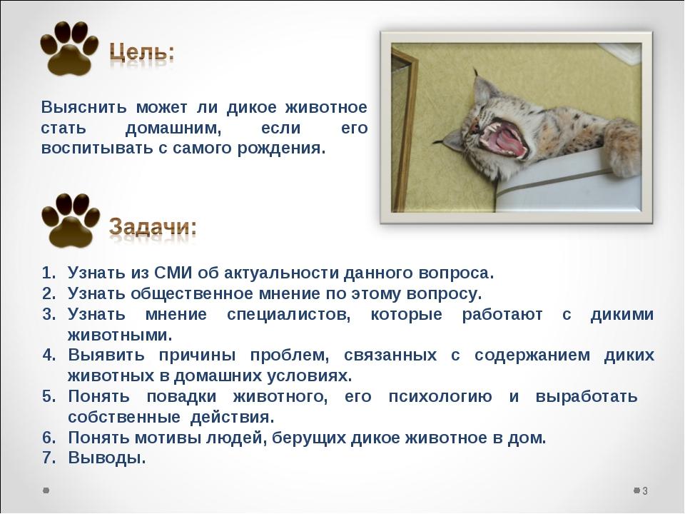 Выяснить может ли дикое животное стать домашним, если его воспитывать с самог...