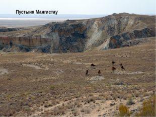 Природные зоны Степи Общего Сырта Пустыня Мангистау Север Юг Почвы Черноземы
