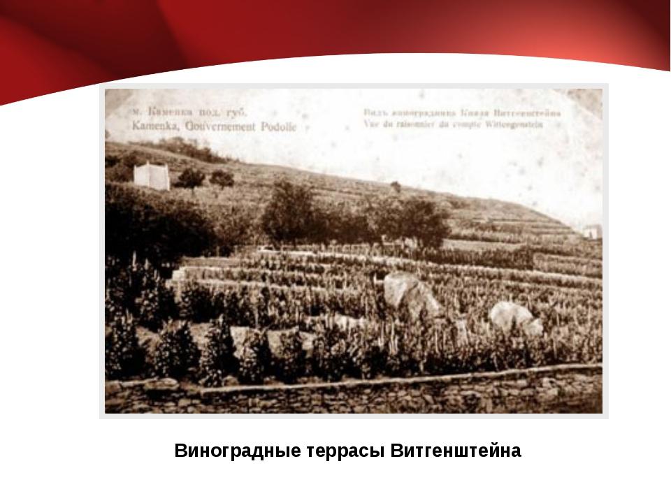 Виноградные террасы Витгенштейна