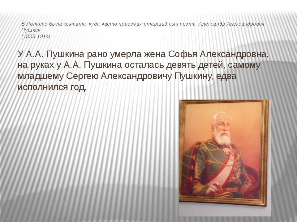 В Лопасне была комната, куда часто приезжал старший сын поэта, Александр Алек...
