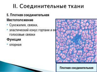 5. Плотная соединительная Местоположение Сухожилия, связки, эластический кону