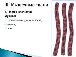 2.Поперечнополосатая Функции Произвольные движения тела, мимика, речь