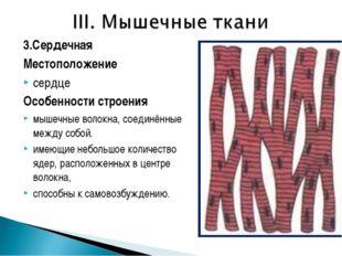 3.Сердечная Местоположение сердце Особенности строения мышечные волокна, соед