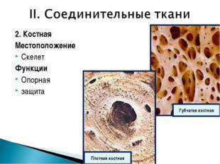 2. Костная Местоположение Скелет Функции Опорная защита Губчатая костная Плот