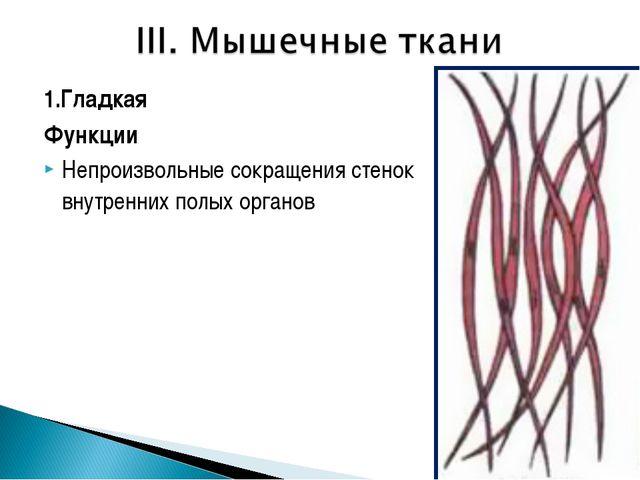 1.Гладкая Функции Непроизвольные сокращения стенок внутренних полых органов