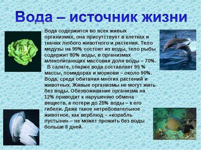 Вода содержится во всех живых организмах, она присутствует в клетках и тканях...