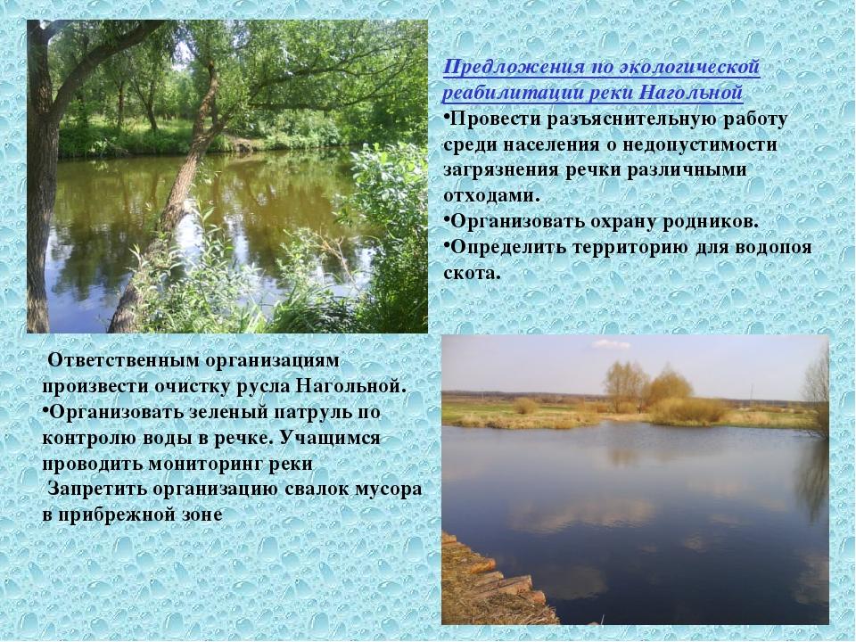 Предложения по экологической реабилитации реки Нагольной Провести разъяснител...