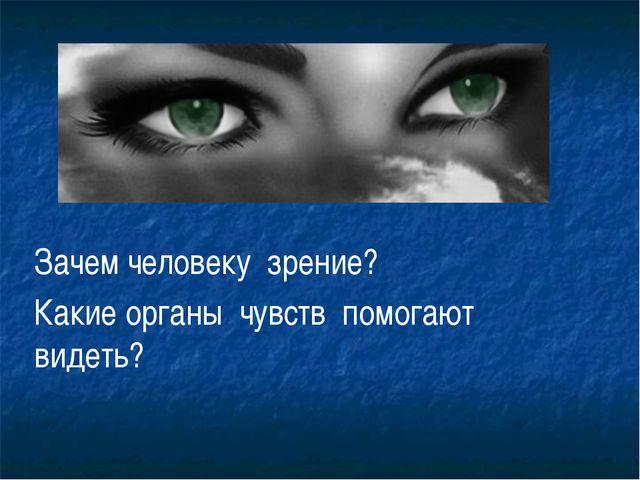 Зачем человеку зрение? Какие органы чувств помогают видеть?