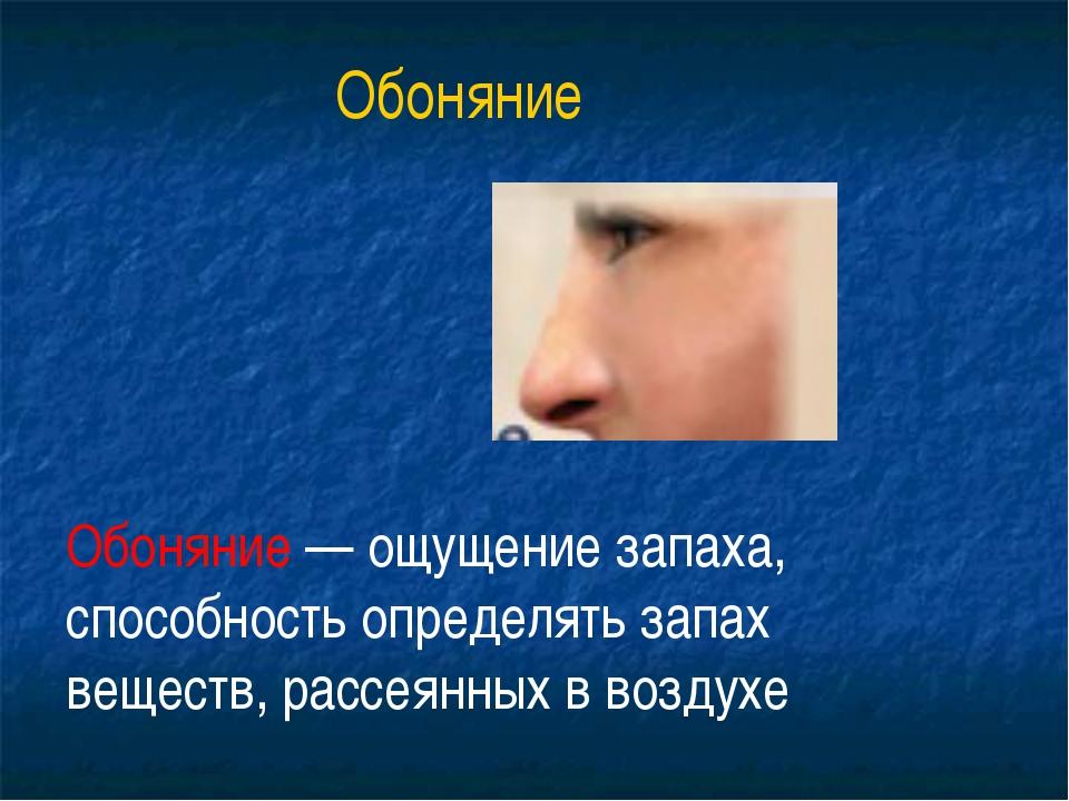 осязания обоняния вкуса слуха зрения органы