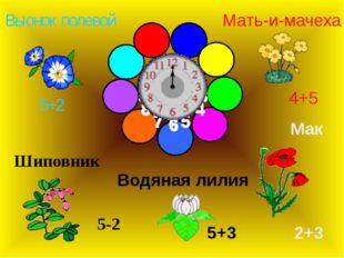 Вьюнок полевой Мак Шиповник Мать-и-мачеха Водяная лилия 5+2 5-2 5+3 2+3 4+5