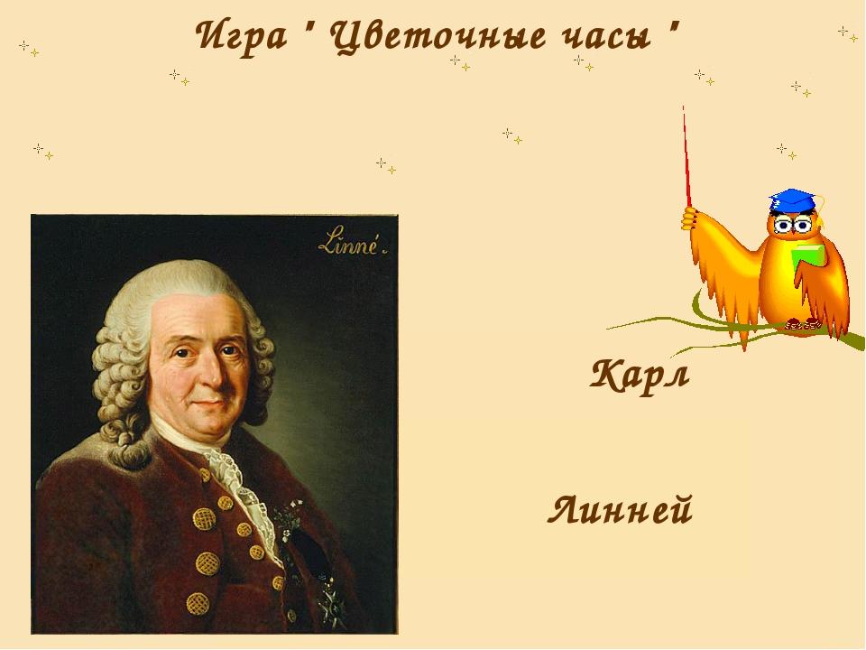 """Игра """" Цветочные часы """" Карл Линней"""