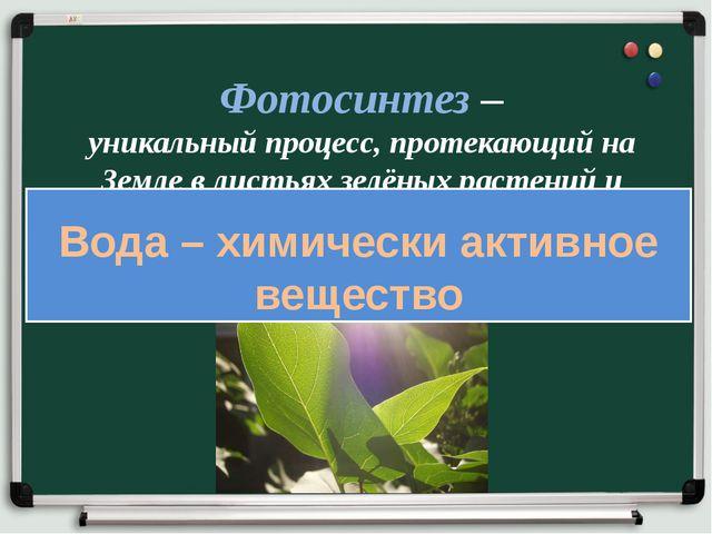 Фотосинтез – уникальный процесс, протекающий на Земле в листьях зелёных расте...