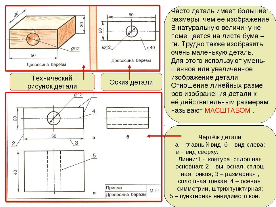 Сравнение эскиза и технического рисунка