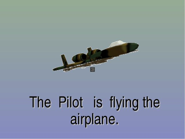 The Pilot is flying the airplane.
